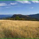 Montagne de Pélegrine